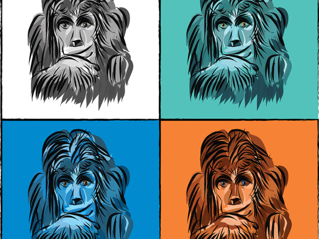 Pop art monkeys