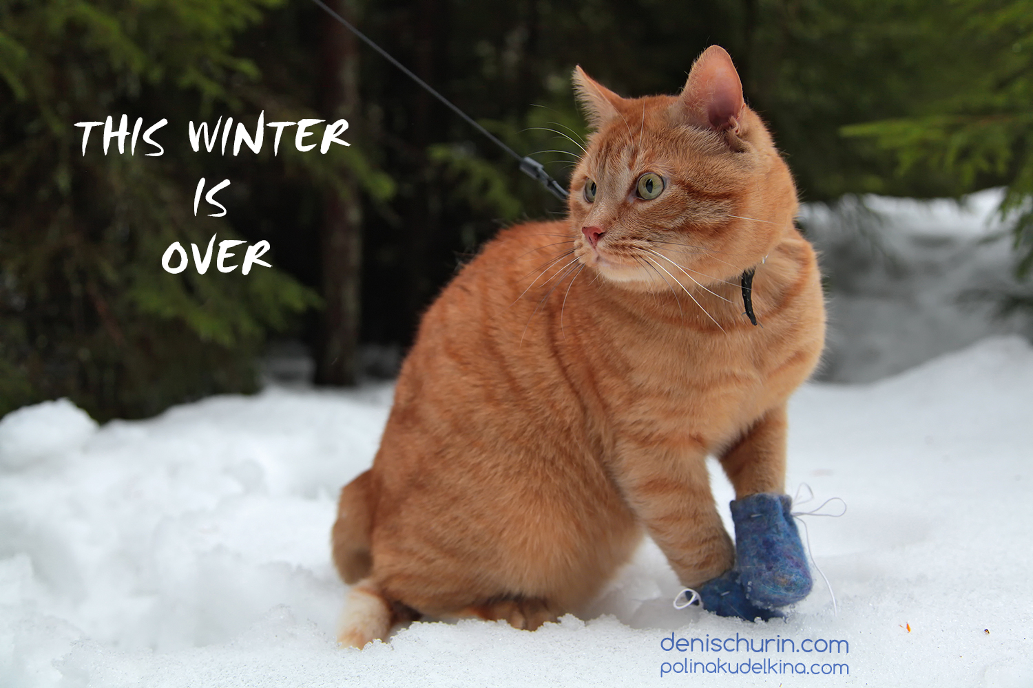 this-winter-is-over_small